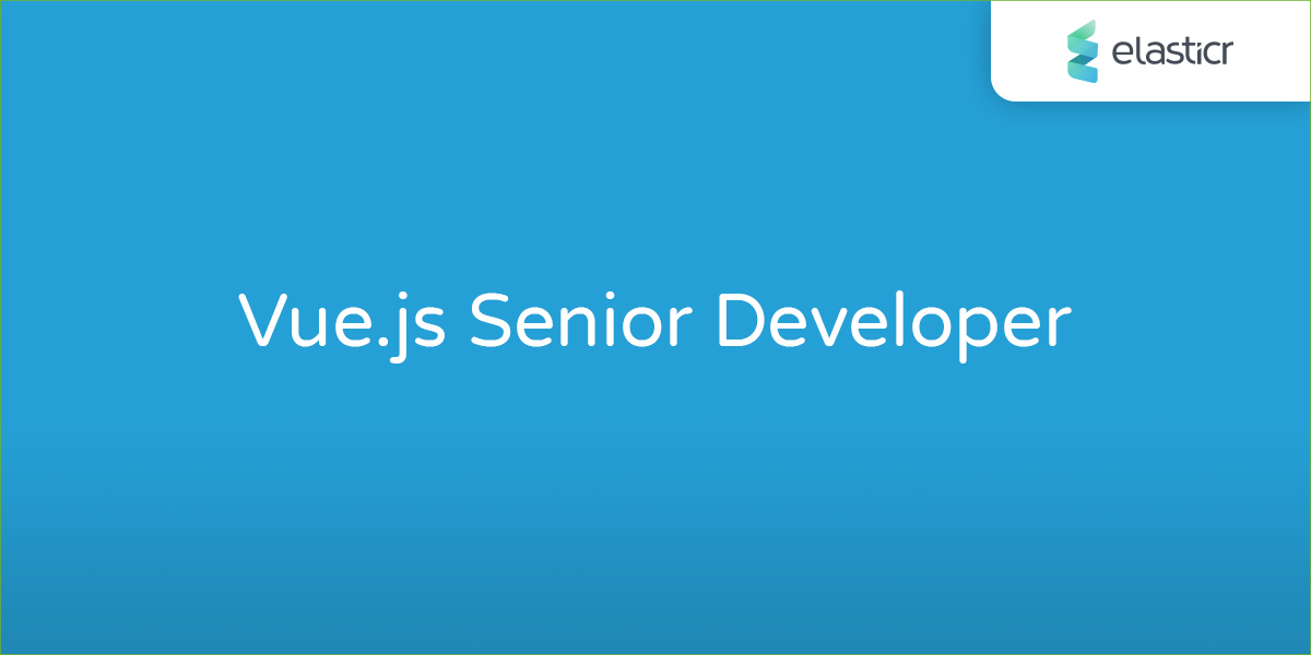Vue.js Senior Developer